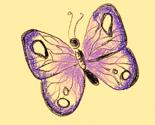 Rrpapillon2_ed_thumb