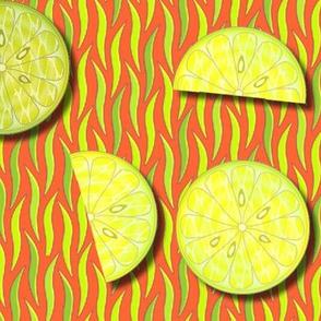 © 2011 citrus fresh