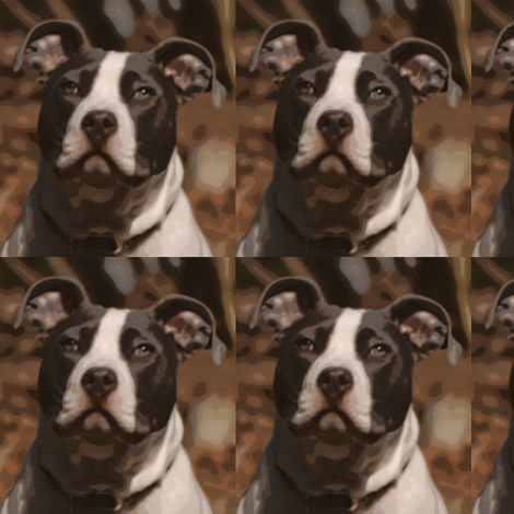 mirroredpitbull