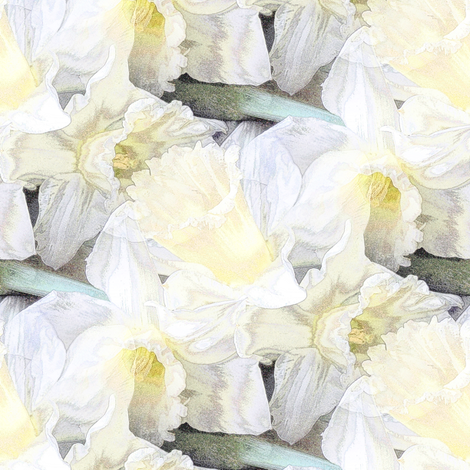 Ivory daffodil fabric by vib on Spoonflower - custom fabric