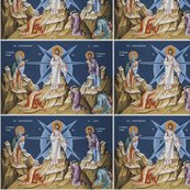 Rrtransfiguration_shop_thumb