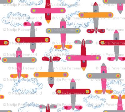 les_avions_de_léon_rose