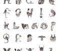 Rrpatroon_alfabet_klein_comment_62721_thumb
