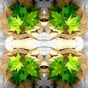 Rrra_tree_grows_ed_ed_ed_ed_ed_ed_ed_shop_thumb
