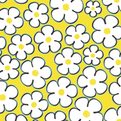 daisy_yellow
