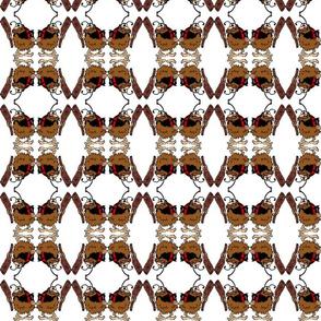 cavebug-ed