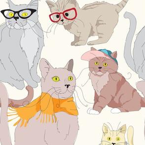 Accessory Cats