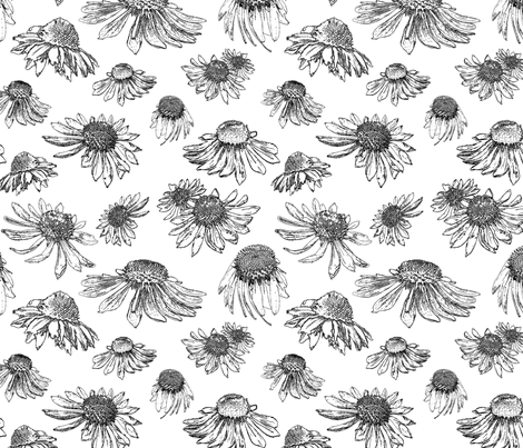 Coneflowers-Black and White fabric by coloroncloth on Spoonflower - custom fabric