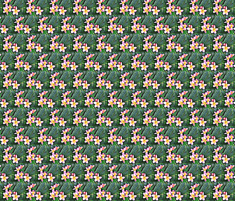 Yellow Plumeria  fabric by robin_rice on Spoonflower - custom fabric