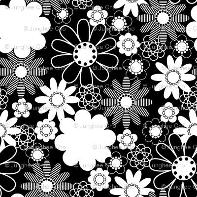 Daisy_Black and  White