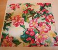 Rrapple_blossoms_comment_88914_thumb