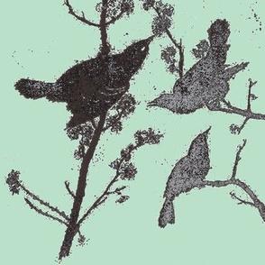 Blackbirds on Robins Egg Blue