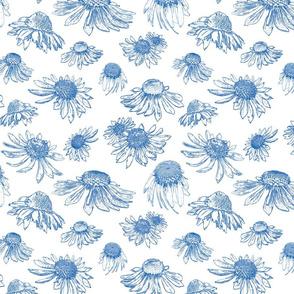 Coneflowers - Indigo on White