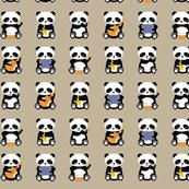 a band o' pandas