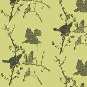 Blackbirds on Green