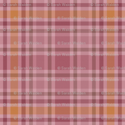 Charlotte Bronte's Wild Roses Plaid on Canvas