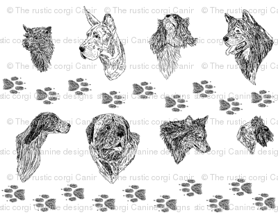 Black and White Dog Protrait Sketches