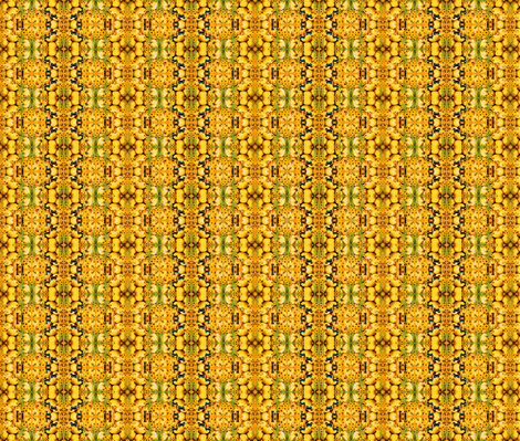 Pumpkins Galore! fabric by robin_rice on Spoonflower - custom fabric
