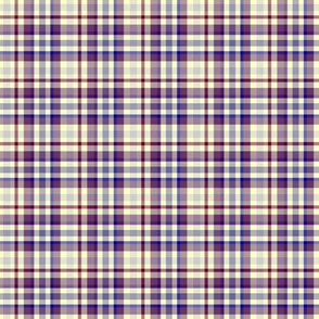 Purple and Yellow Plaid