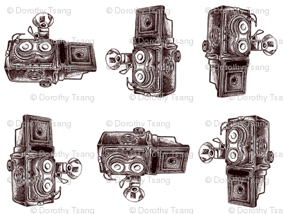 Vintage Cameras - White Background