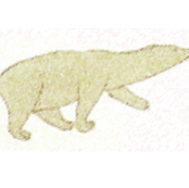 inuit_nanuk_polar_bear_cream