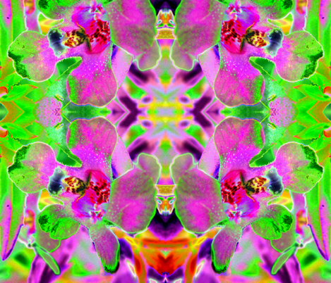 Will's flower fabric by fayebeasintx on Spoonflower - custom fabric