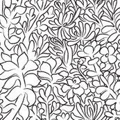 Rrsucculent_garden2_shop_thumb