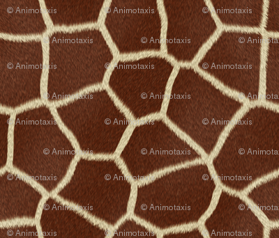 Giraffe_Skin