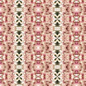 Magnolias 6487-4