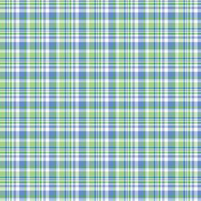 1-green-plaid