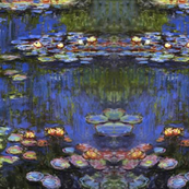 Monet Kalidoscope