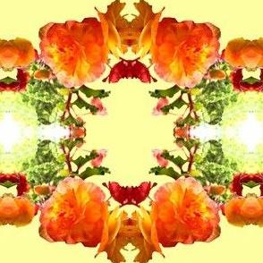Begonia Floral