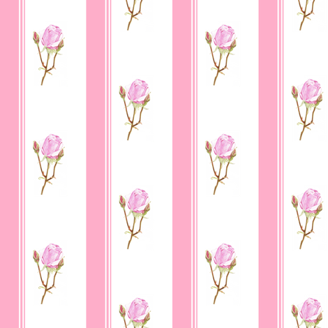 Rose Stripes fabric by ccreechstudio on Spoonflower - custom fabric