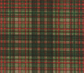 Woodland_faerie_plaid___peacoquette_designs___copyright_2012_comment_97004_thumb