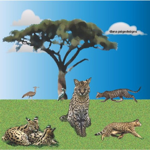 African Serval and Savannah Cats