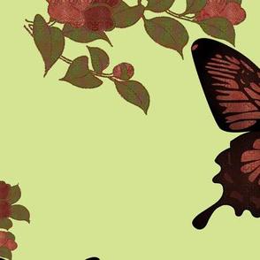 plbutterflies2