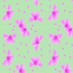 Purple Moths