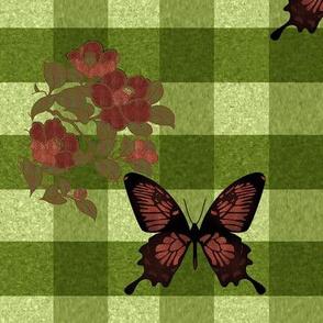 plbutterflies2Butterflygingham