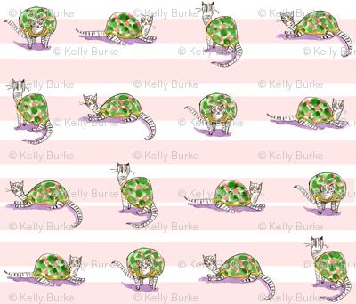 tortoise_shells