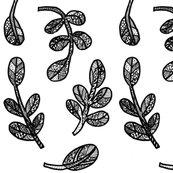 Rshrubs_doodle0001_ed_shop_thumb