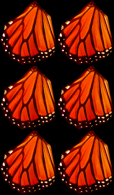 Monarch butterfly wing fabric by shoshanna on Spoonflower - custom fabric