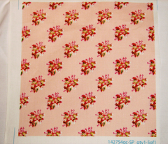 Rrrpink_china__rose_toile_11_comment_75159_preview