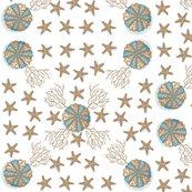 Ra-sea_stars_copy_shop_thumb