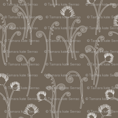Dark Grey Fern