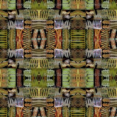 fern_patchwork_hdm