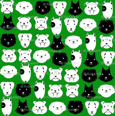 chiens en lignes fond vert