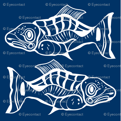 Salmon pair - ink brushed pillow large format
