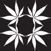 Rrrcannabisfoulard_onyx_shop_thumb