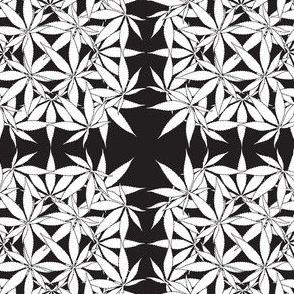 LeafSquare_Onyx