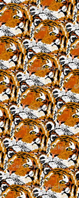 A Lot of Tigers